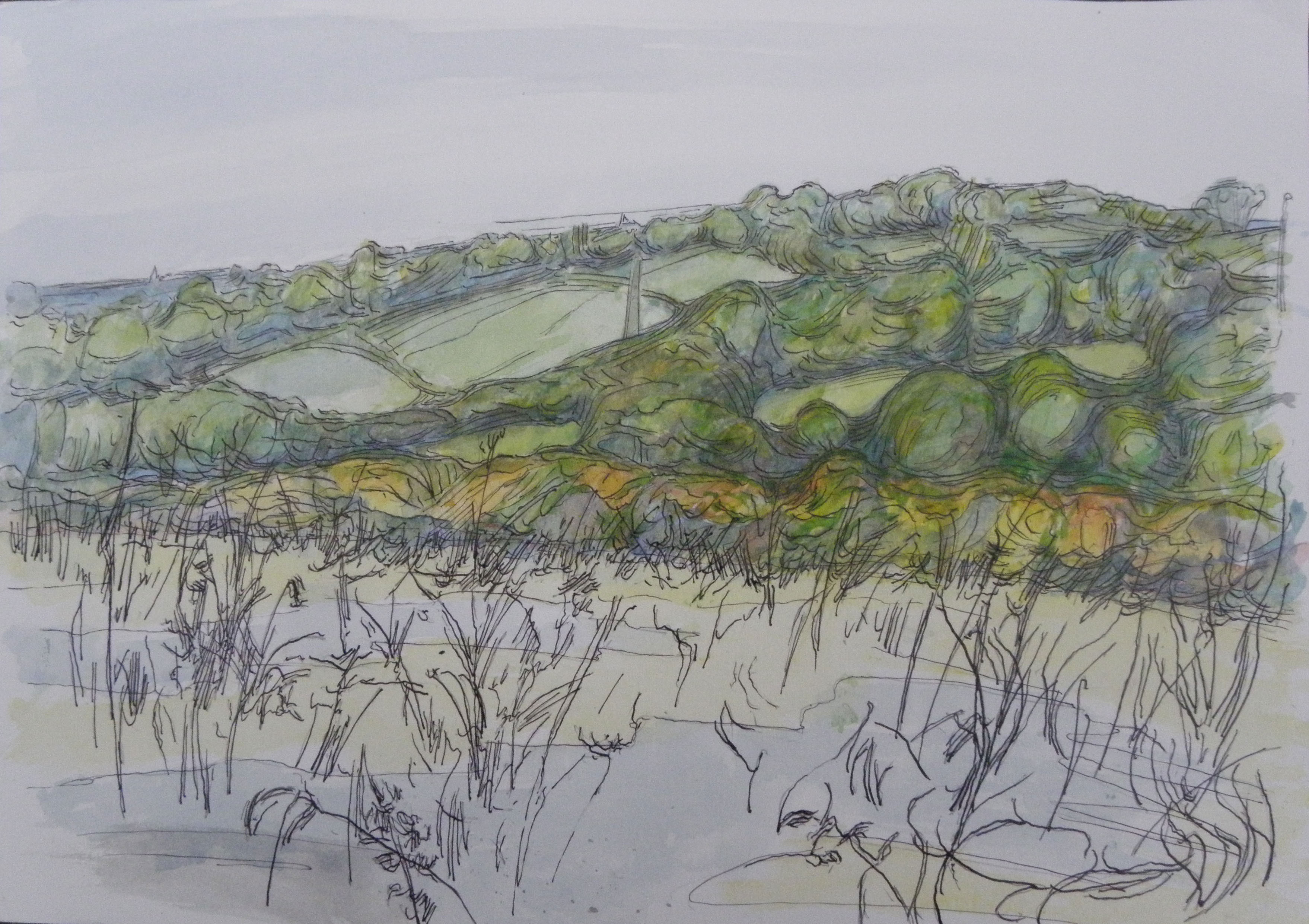 Drawings landscapes the weald of kent 2012 whitemarkarts for What is landscape drawing
