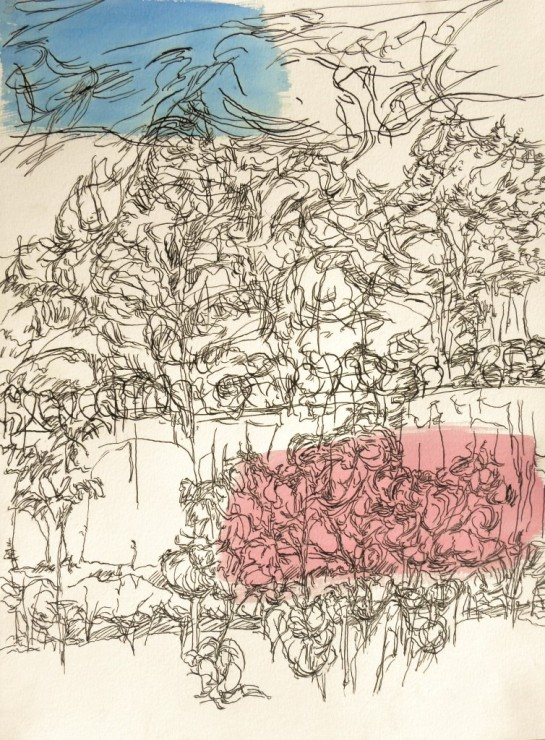 Kirombe garden, rainy season 2015, large-drawing number 4. 420 x 590 mm. Watercolour on paper.