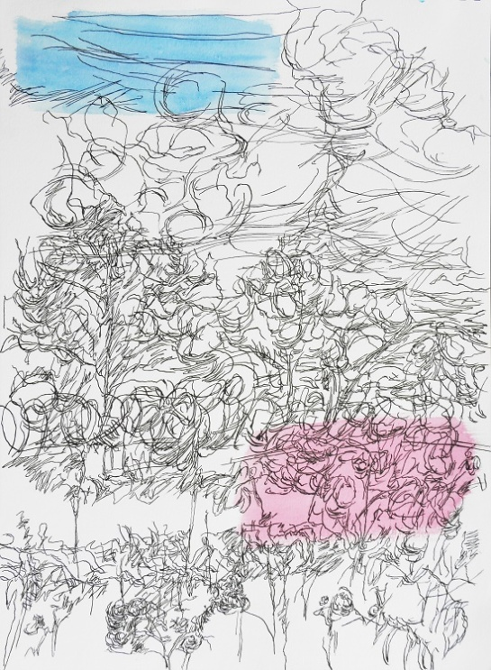 Kirombe garden, rainy season 2015, large-drawing number 5. 420 x 590 mm. Watercolour on paper.