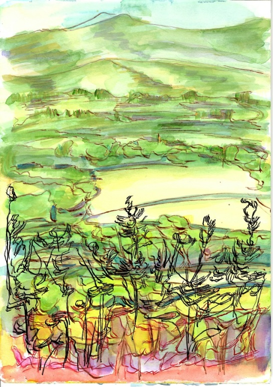 'From Jacobstowe towards Yes Tor and High Willhays, Summer 2016' No 3. 30 x 21cm. Acrylic, Watercolour and Indian Ink on Paper